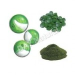 Chlorella – The King of Chlorophyll